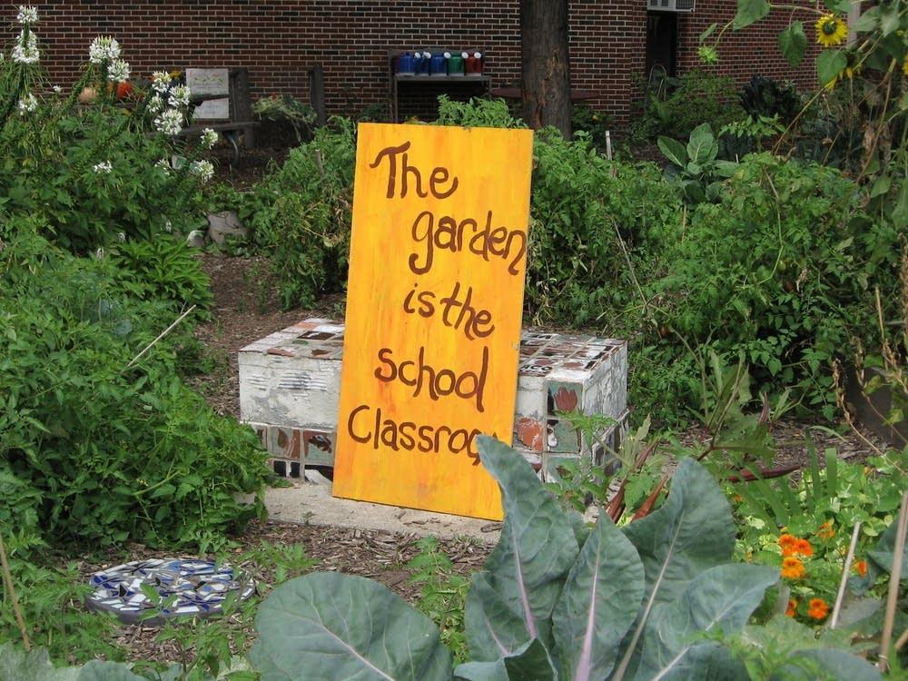 The garden is the school classroom