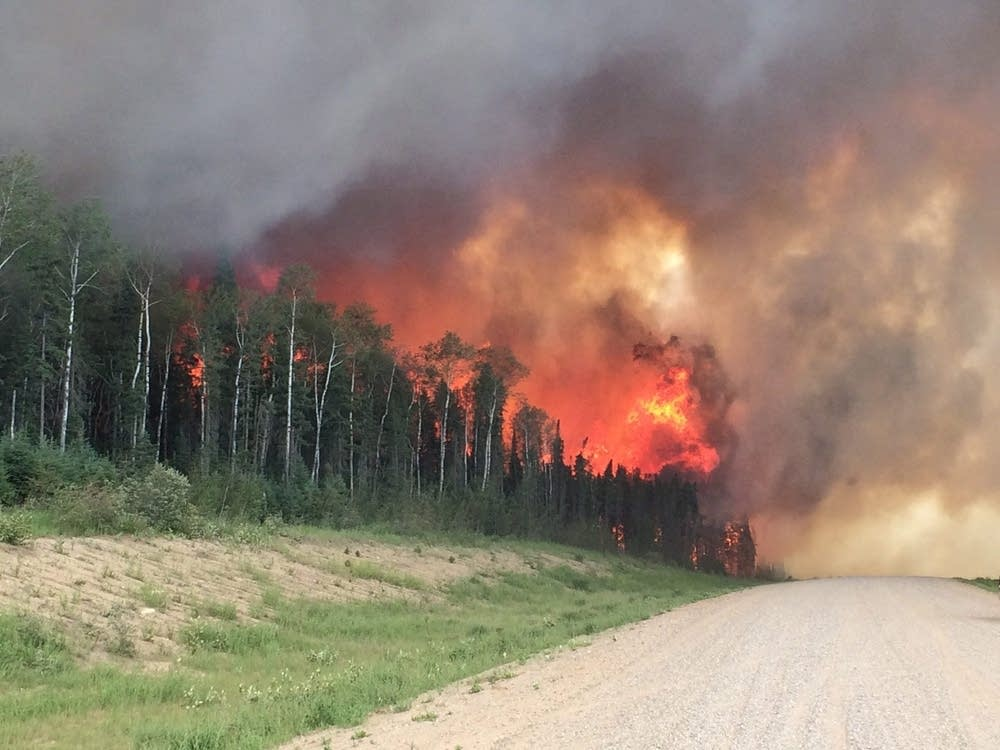 an account of the wildfire burning the forest A review of fire data since the 1980s shows that fires in forests and other   account for more than 70 percent of the area burned in large forest.