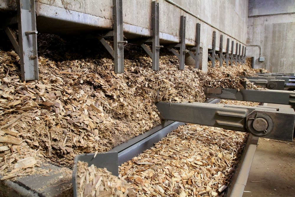 Wood chips were pushed onto a conveyor belt.
