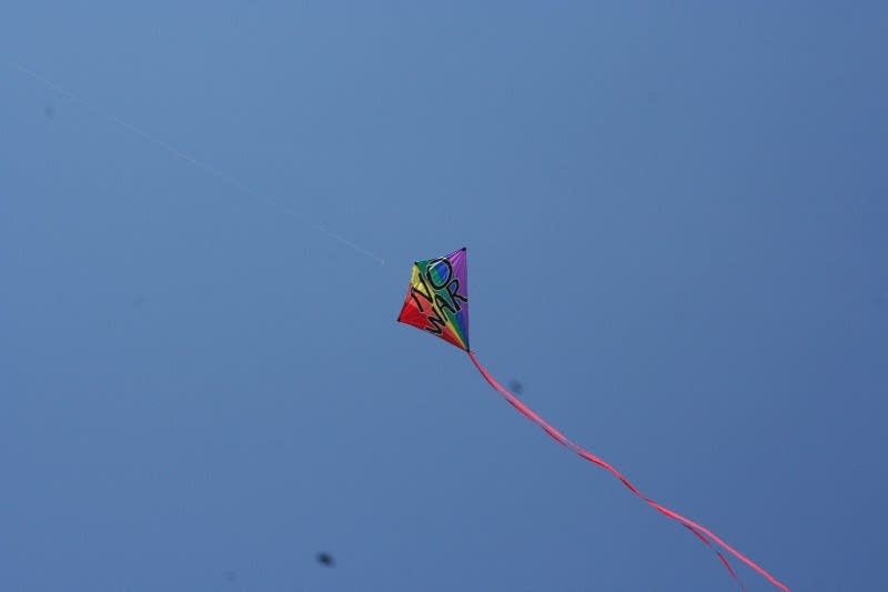 """No War"" kite"