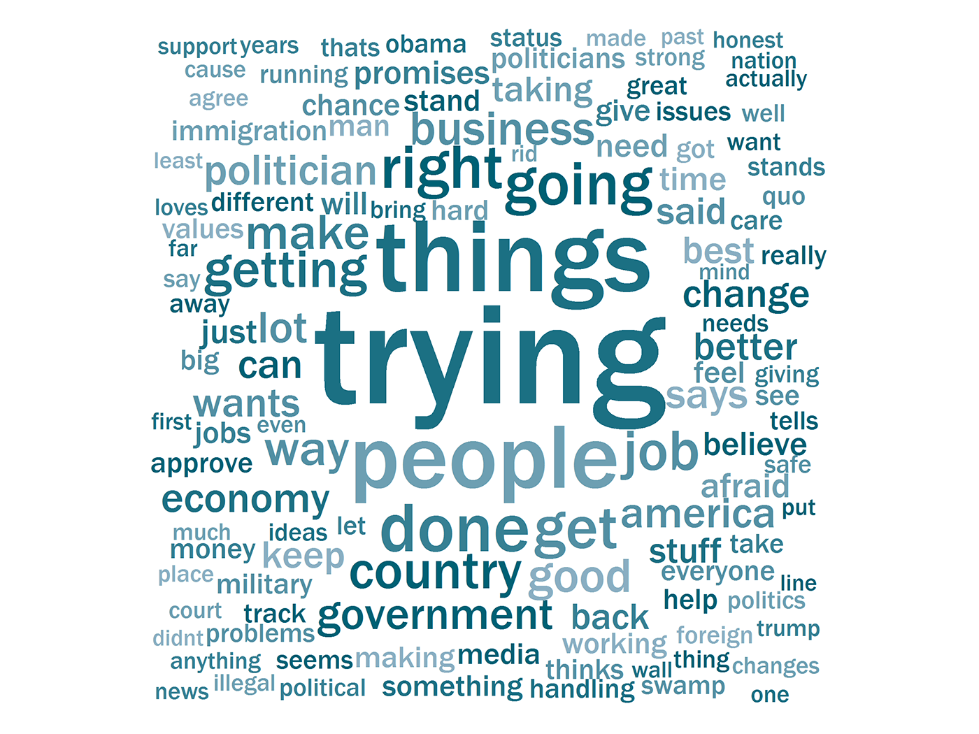 Words Minnesota Trump supporters use to describe the president.