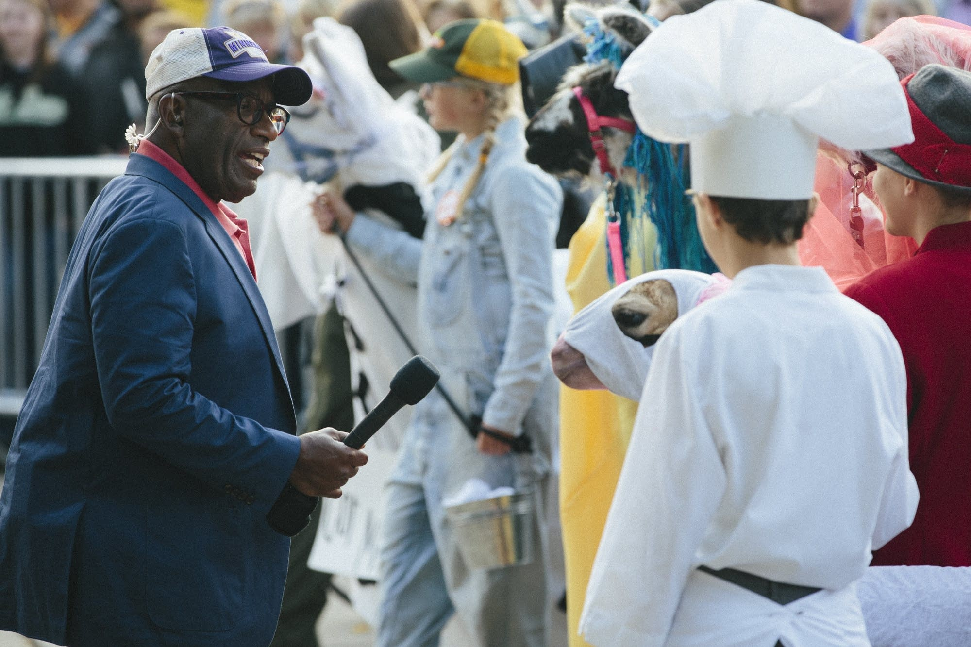 Al Roker of the Today Show judges a llama costume contest
