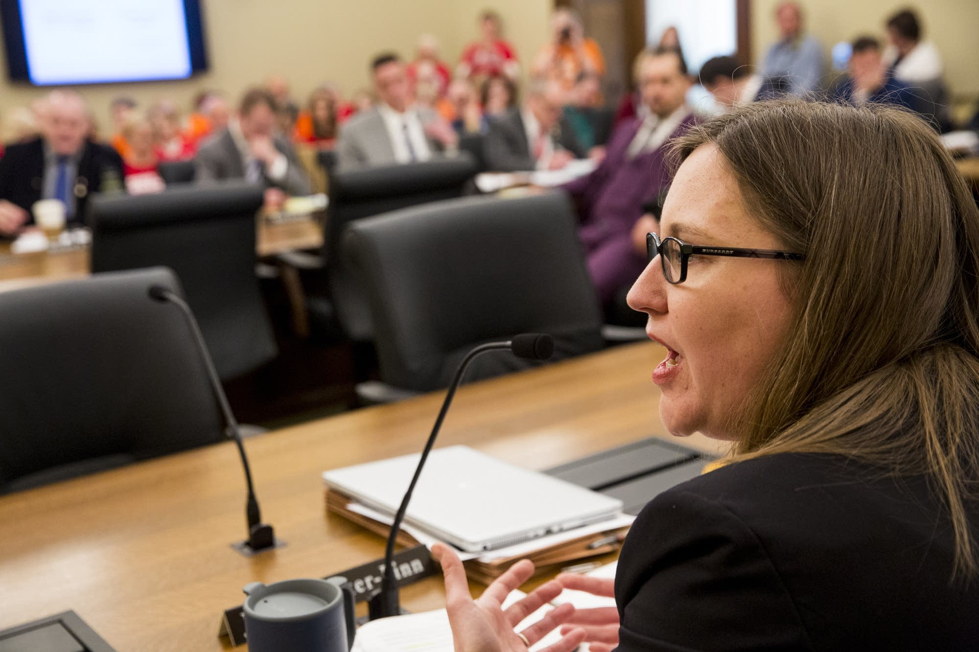 DFL Rep. Jamie Becker-Finn responds to testimony