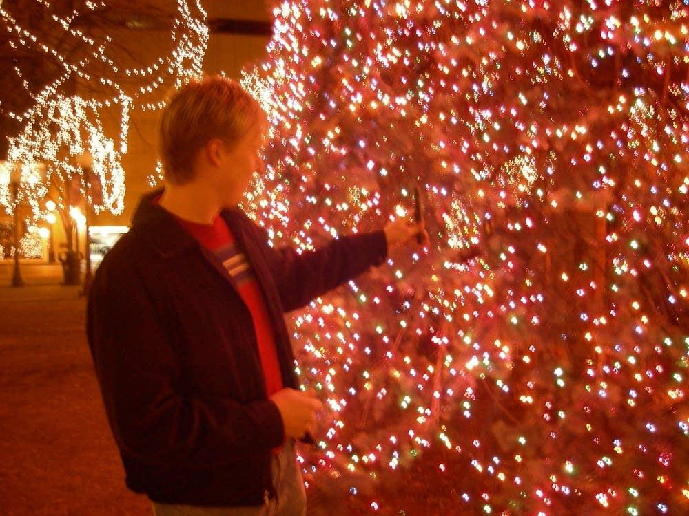 Josh Nollenberg measures the tree