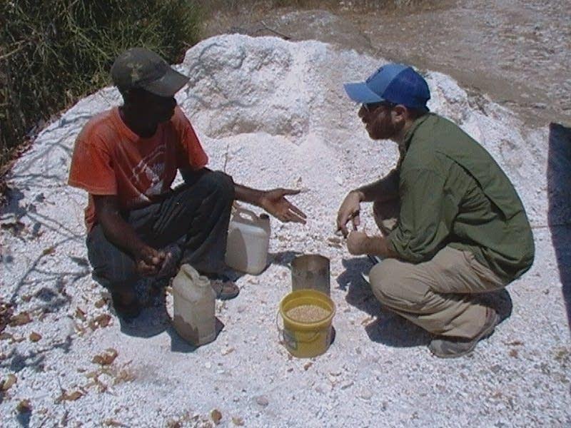 Haiti's grain
