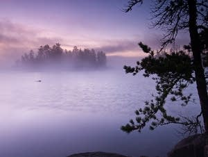 Fog over Saganaga Lake