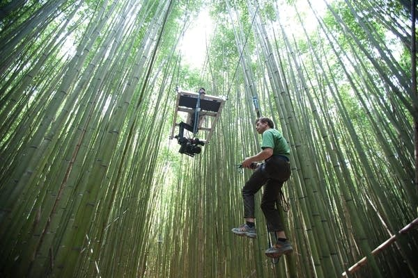 Bryan Smith and camera platform suspended from trees.