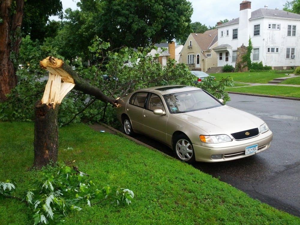 Storm damage in St. Paul