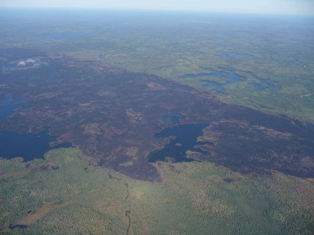 BWCA fire aftermath