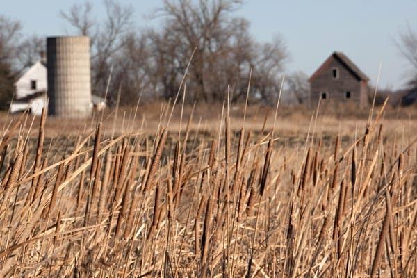 Traverse farmland