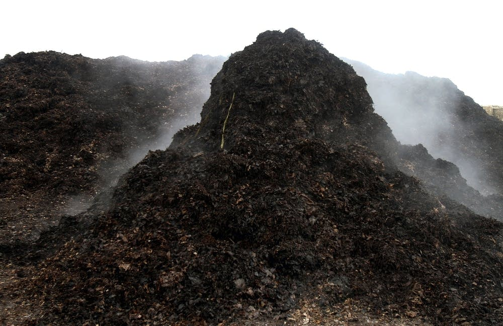 Yard waste steams at the composting facility