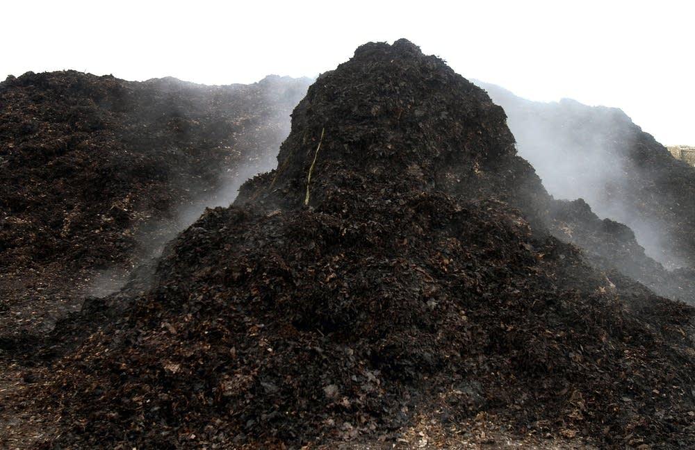 Yard waste steams at the composting facility