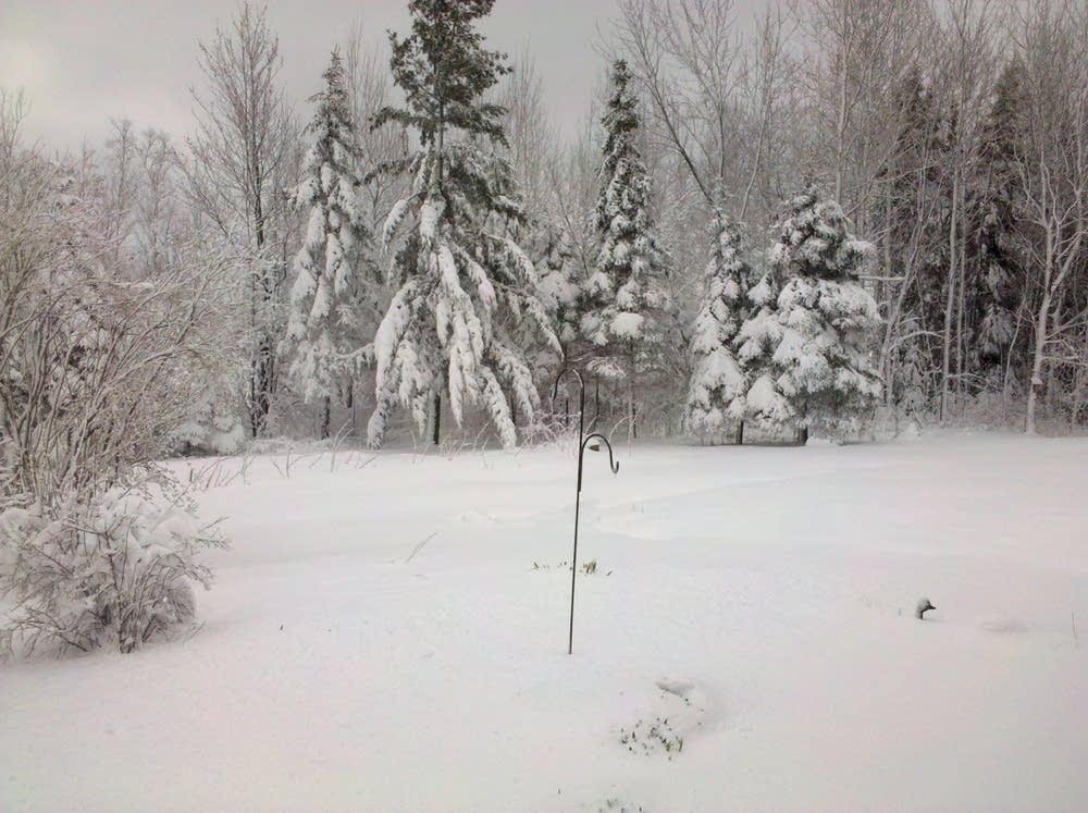Hibbing snow