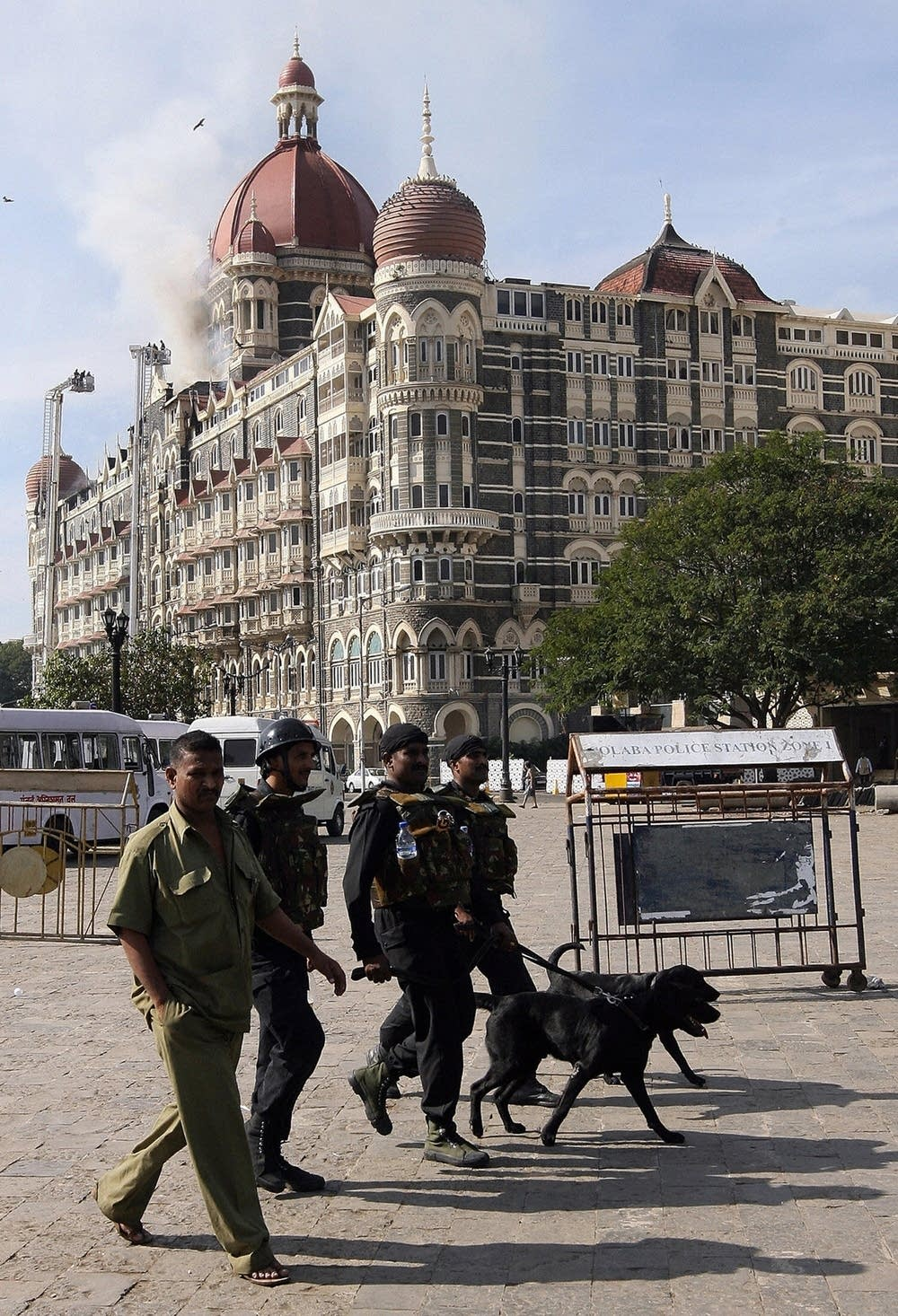 Commandos with dogs arrive at the Taj Hotel
