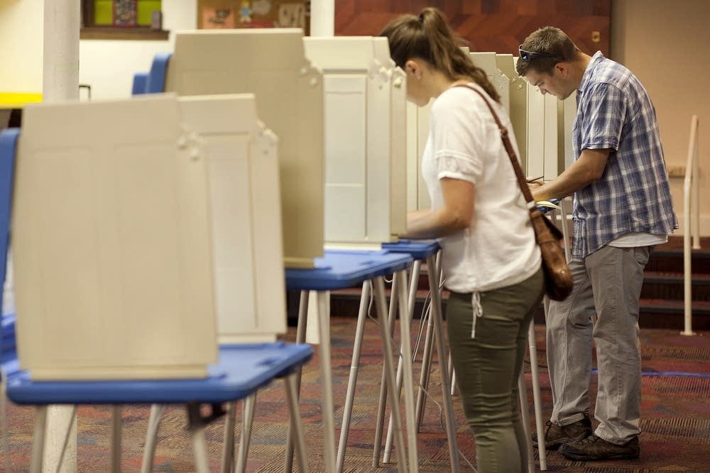 People vote in primary election