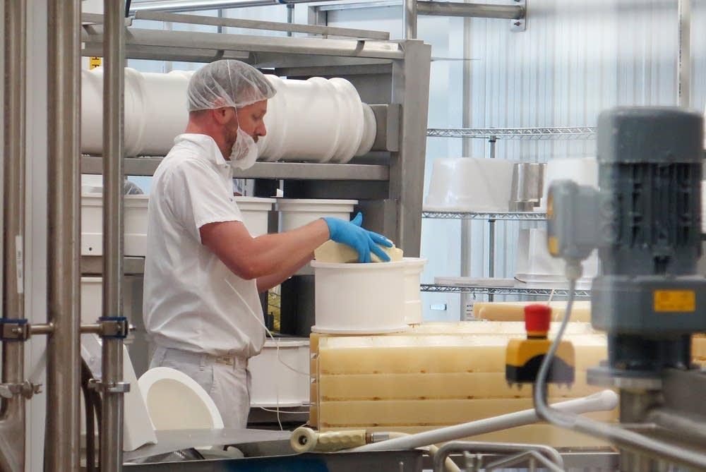 Head cheesemaker Rueben Nilsson examined his work.