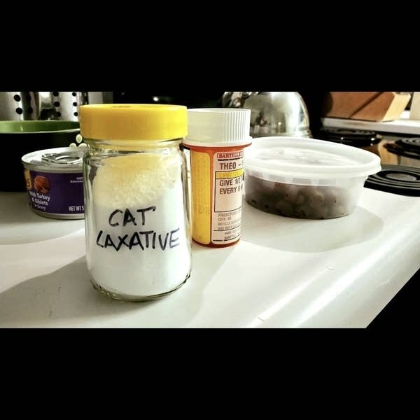 """A jar of white powder that says """"Cat Laxative"""" and a bottle of pills"""