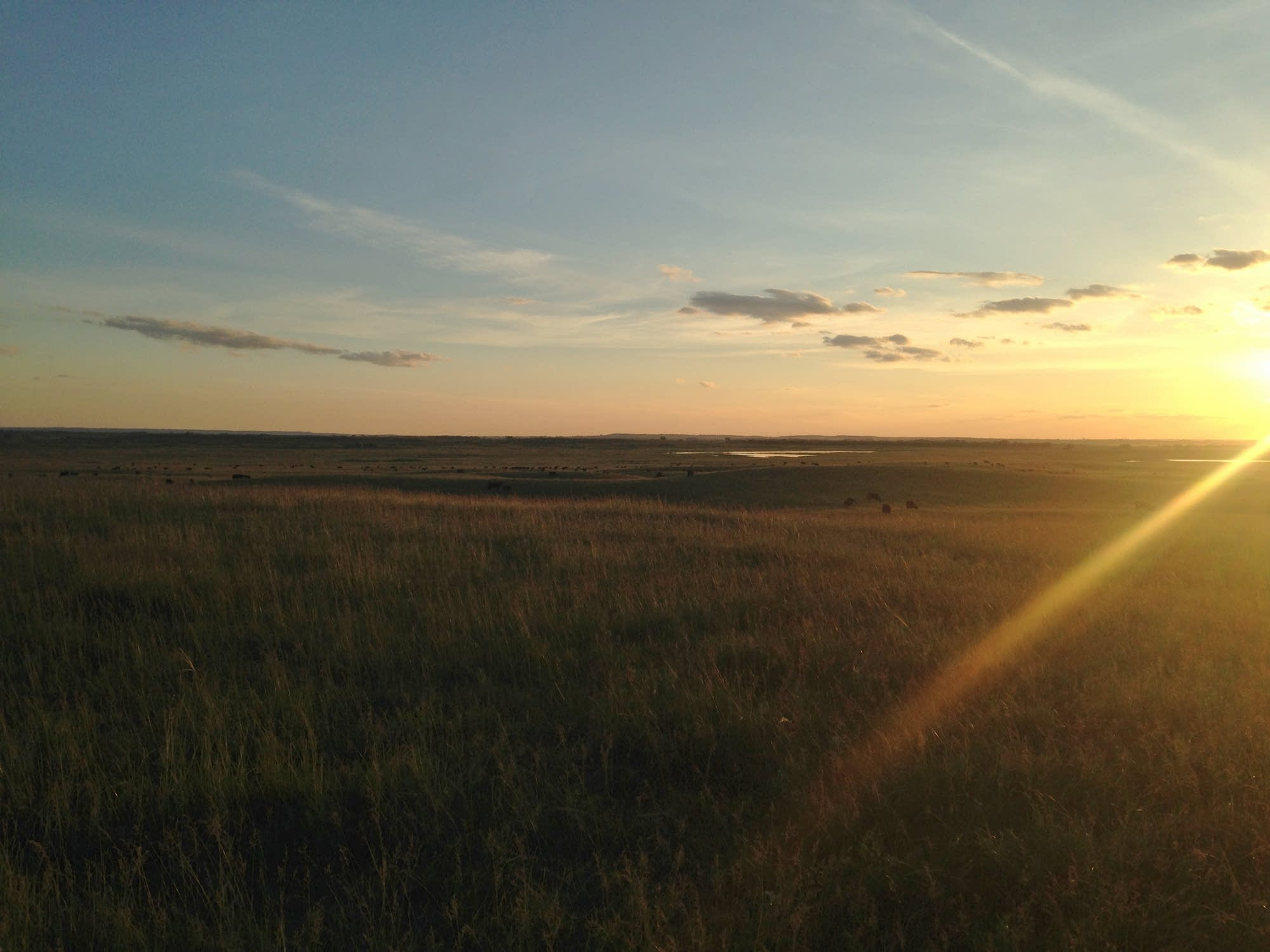 Sunset over a field in Sterling, North Dakota.