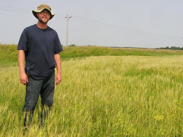 Ryan Batalden stands in his wheat field.