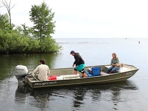 Researchers want to test a hypothesis that invasive species impact walleye.