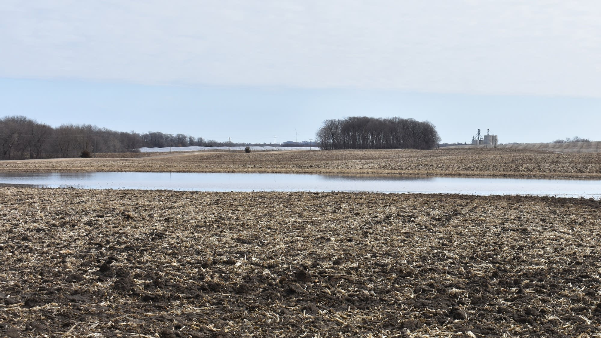 Ponding and flooded fields