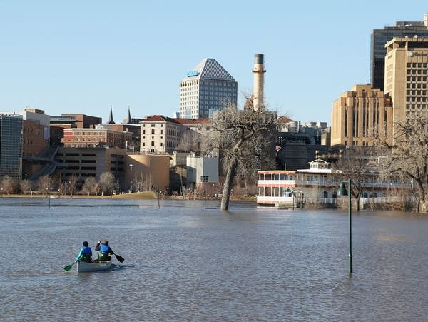 Canoeists paddle through Mississippi River floodwaters at Harriet Island