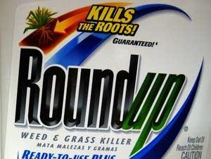 Bayer-Monsanto-What They Make
