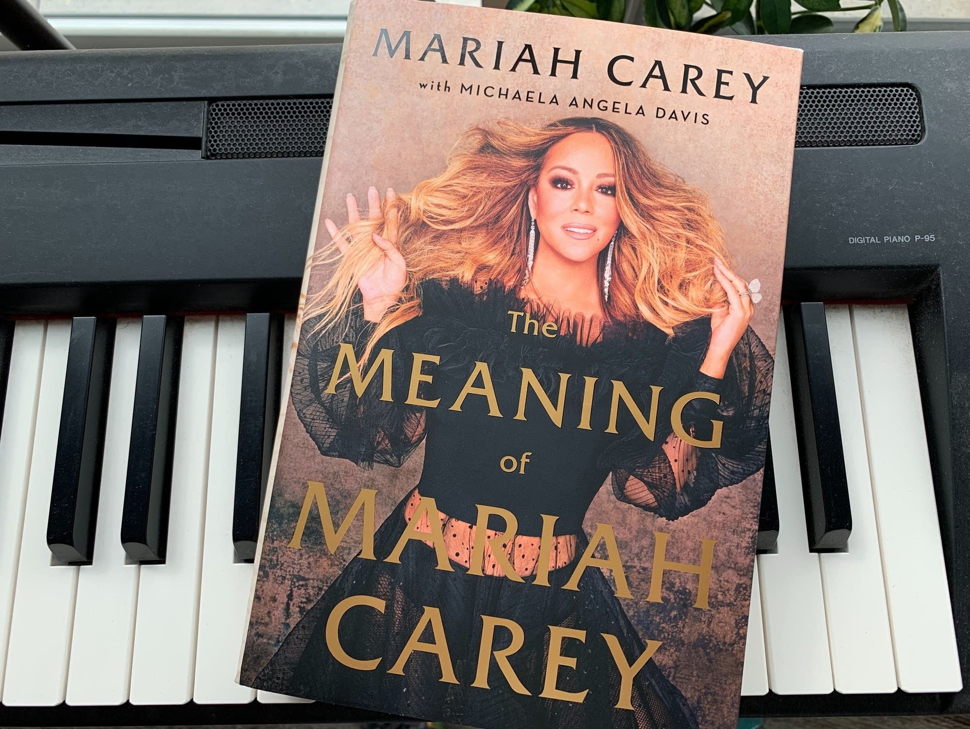 'The Meaning of Mariah Carey.'