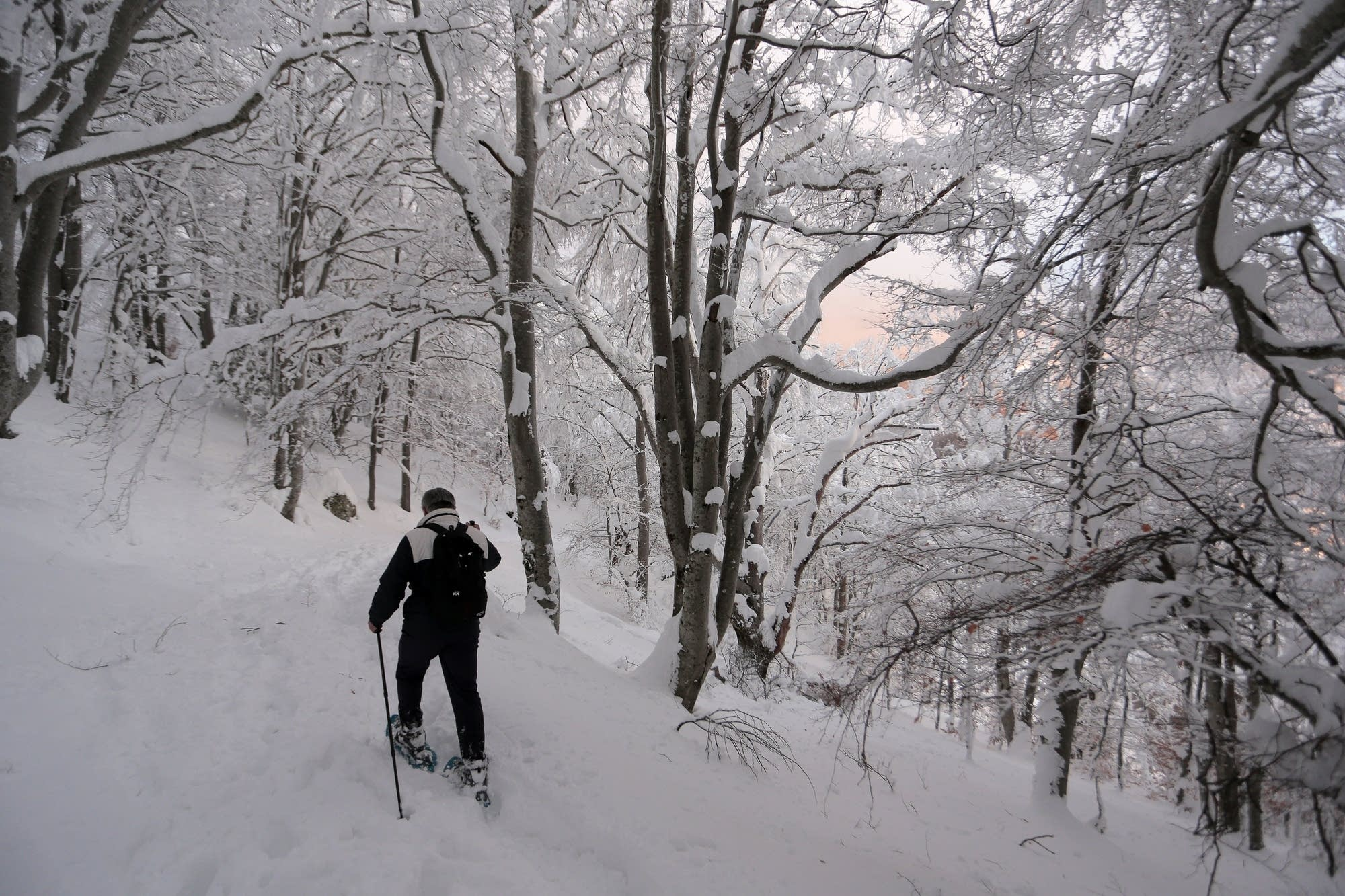 A man walks with snowshoes.