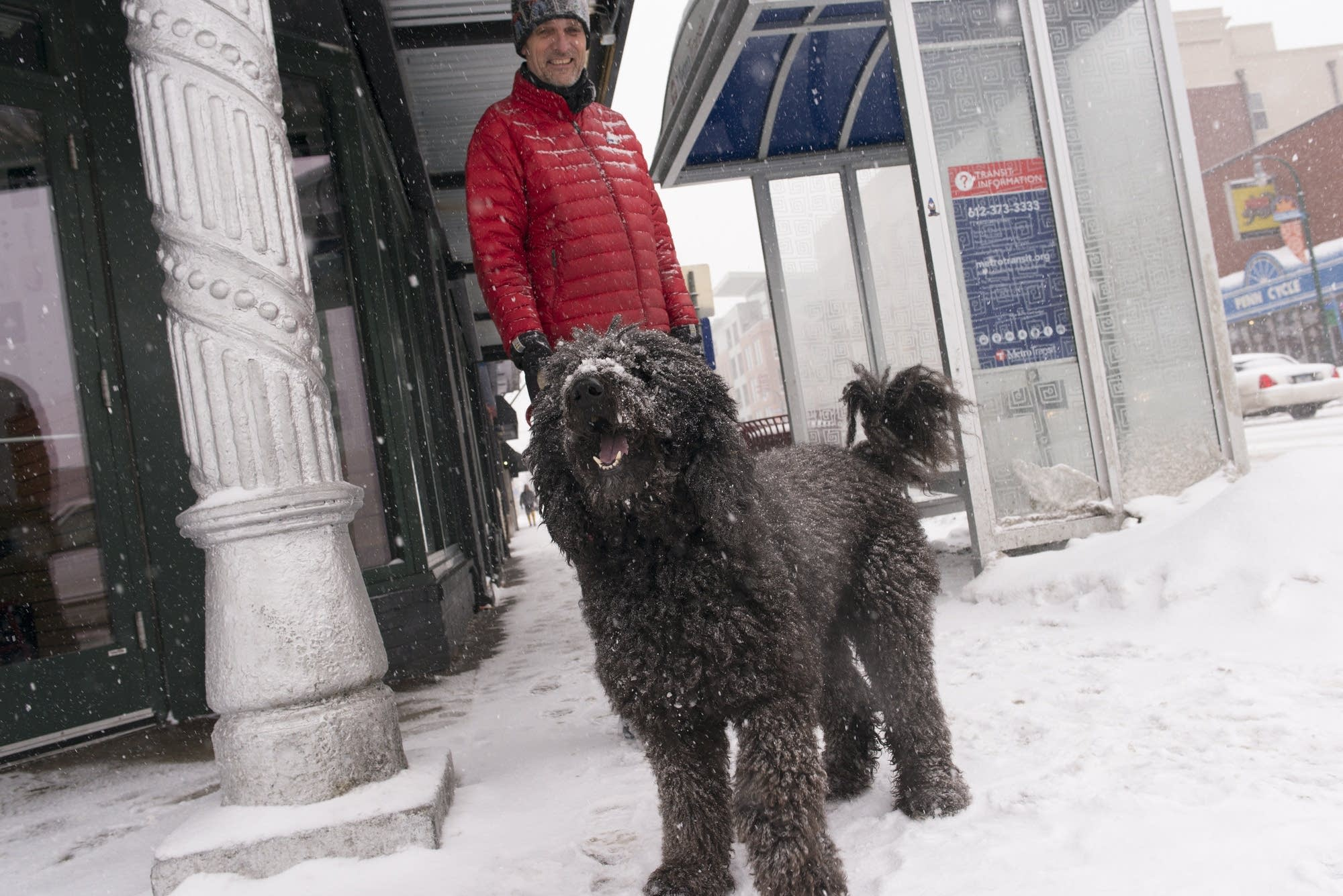 Tony Mommsen and his dog Stella wait to cross the street.