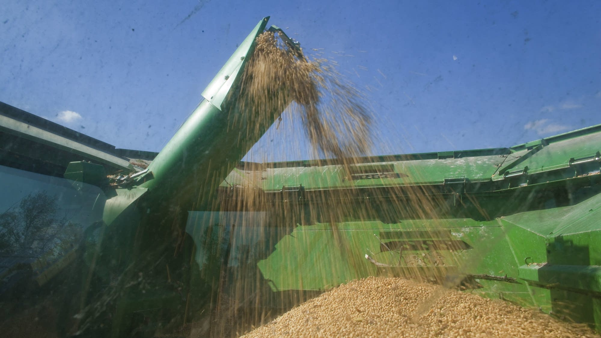 U.S. Dairy Farming Still A Struggle Despite Rise In Milk Prices