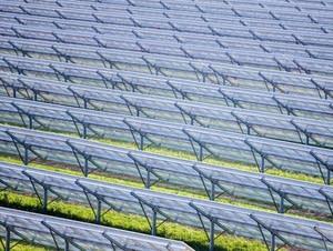 Solar panels stretch across Eichten's solar farm.