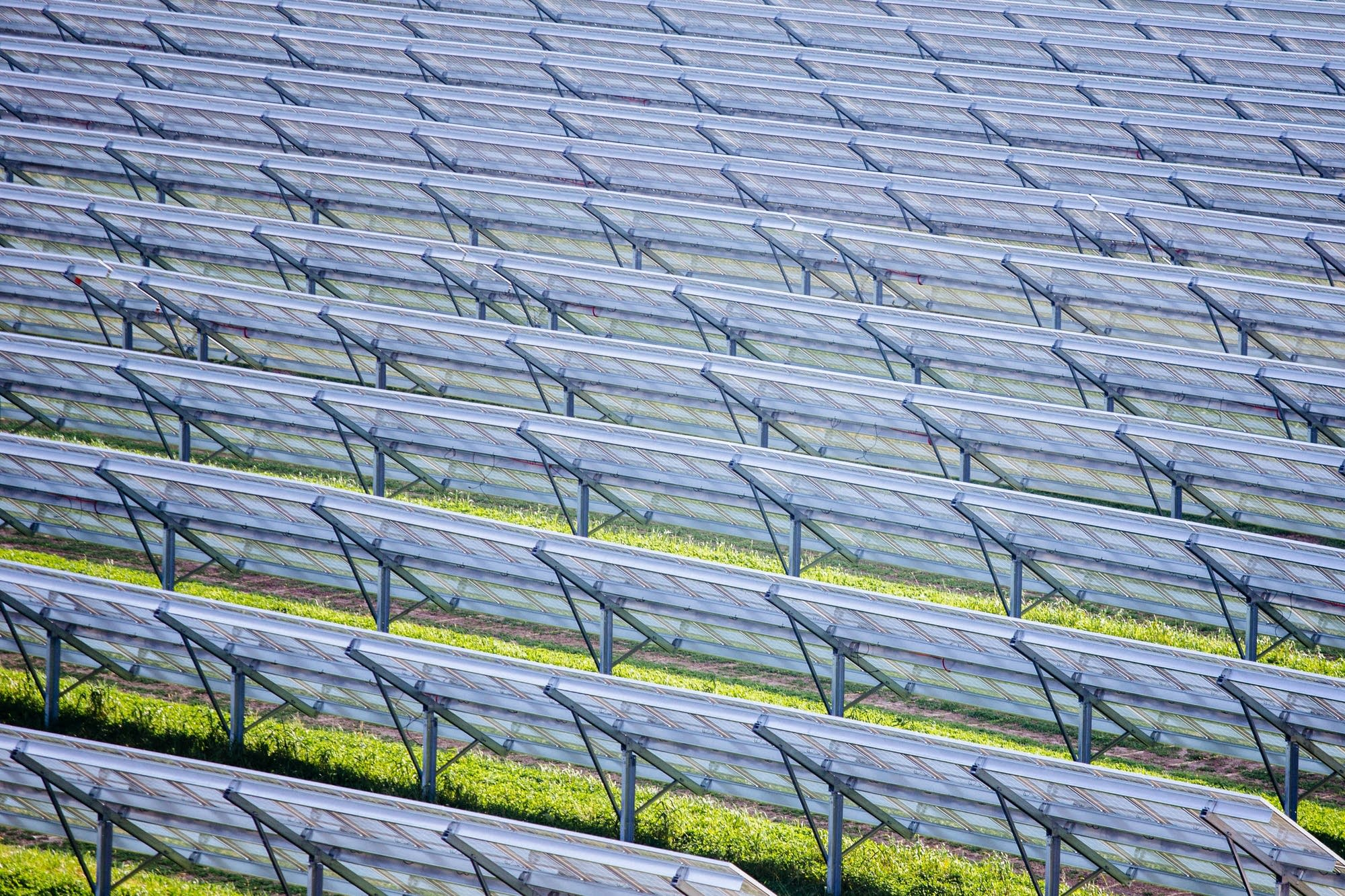 Solar panels stretch across Eichten's solar farm.