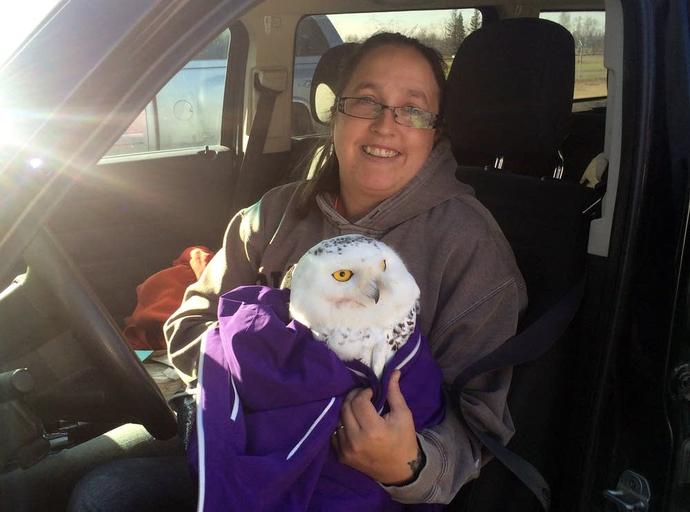 Mindy Kleeb with rescued snowy owl.