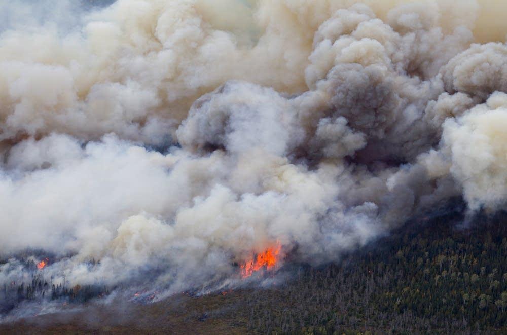 Pagami Creek Fire Map.Bwca Pagami Creek Fire Slows Its Spread Mpr News