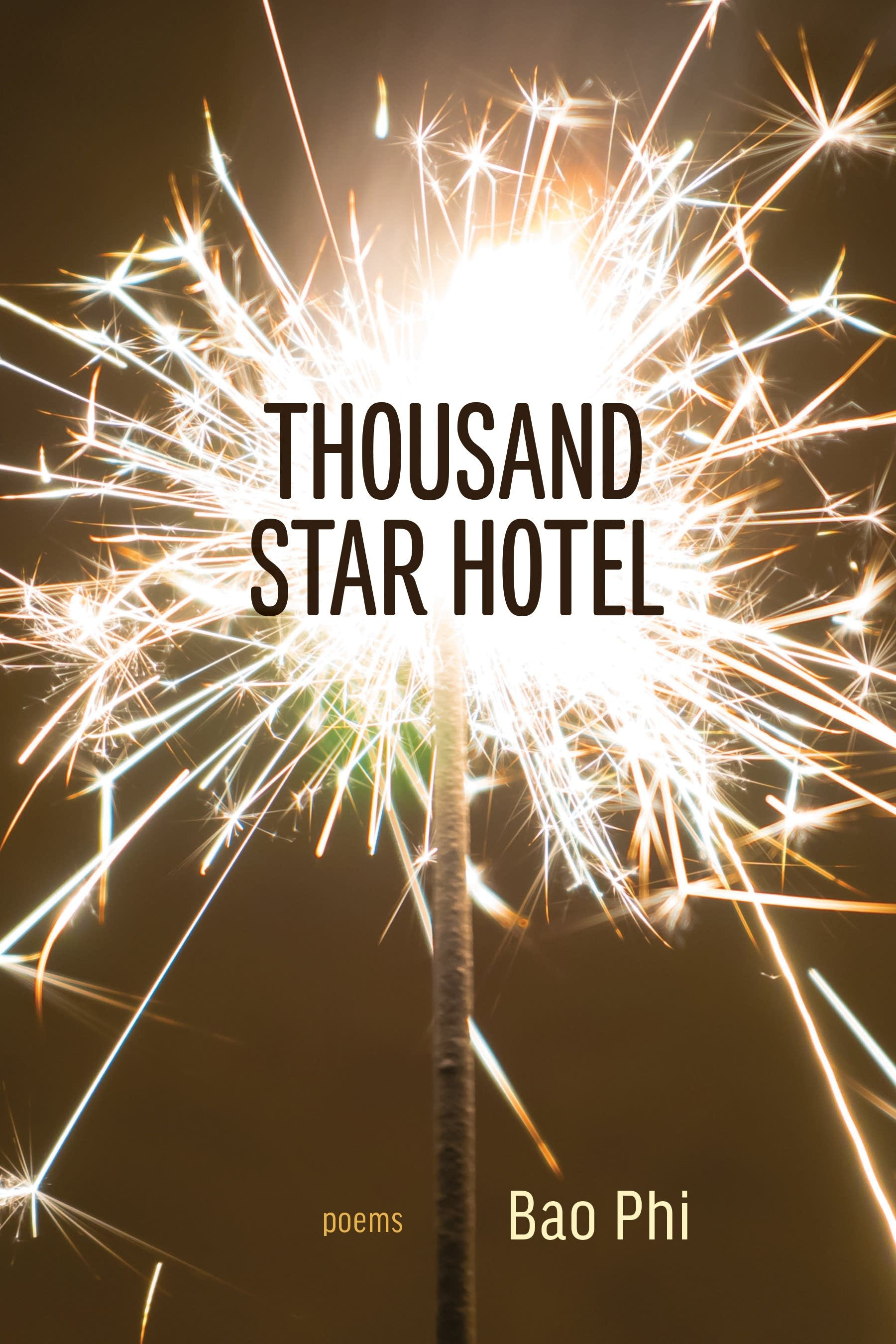"""Thousand Star Hotel"" book cover"