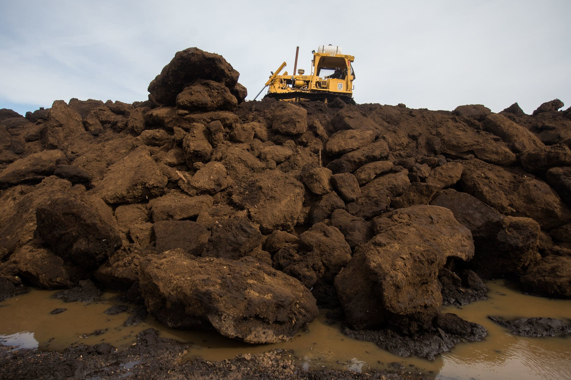 A tractor moves and pulverizes giant frozen chunks of peat.