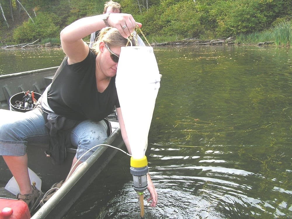 Sampling water
