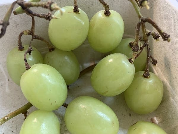 Very close-up shot of a bunch of big, green grapes