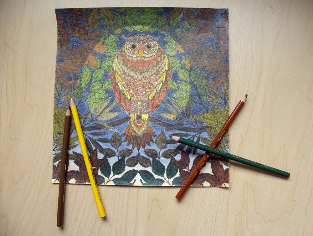 How Adult Coloring Books Became A Million Dollar Trend