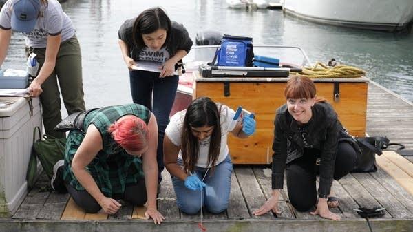 Un groupe se penche sur un quai pour recueillir des échantillons d'eau