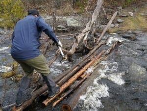 Clearing BWCA trails