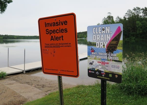 "An orange sign says ""Invasive species alert."""