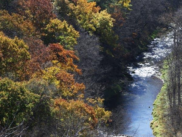 Fall colors in southeastern Minnesota