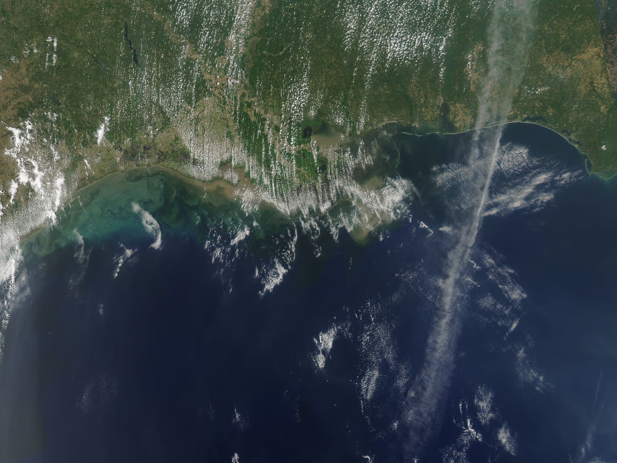 This NASA photo shows the dead zone from space in 2011.