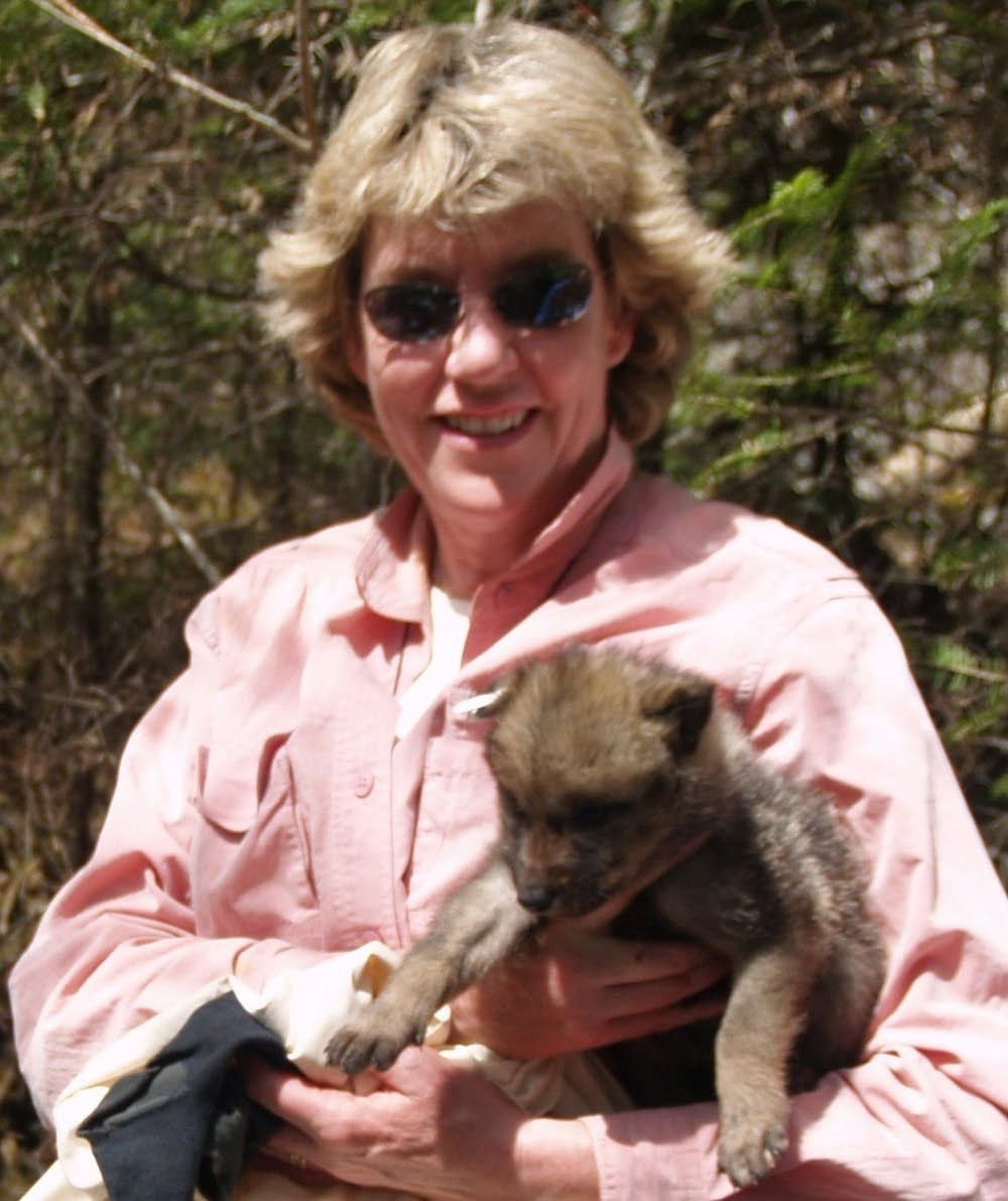 Nancy Gibson and newborn wolf