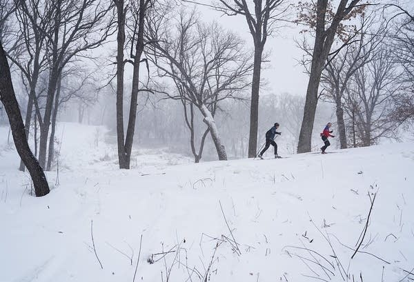 Two people cross country ski.