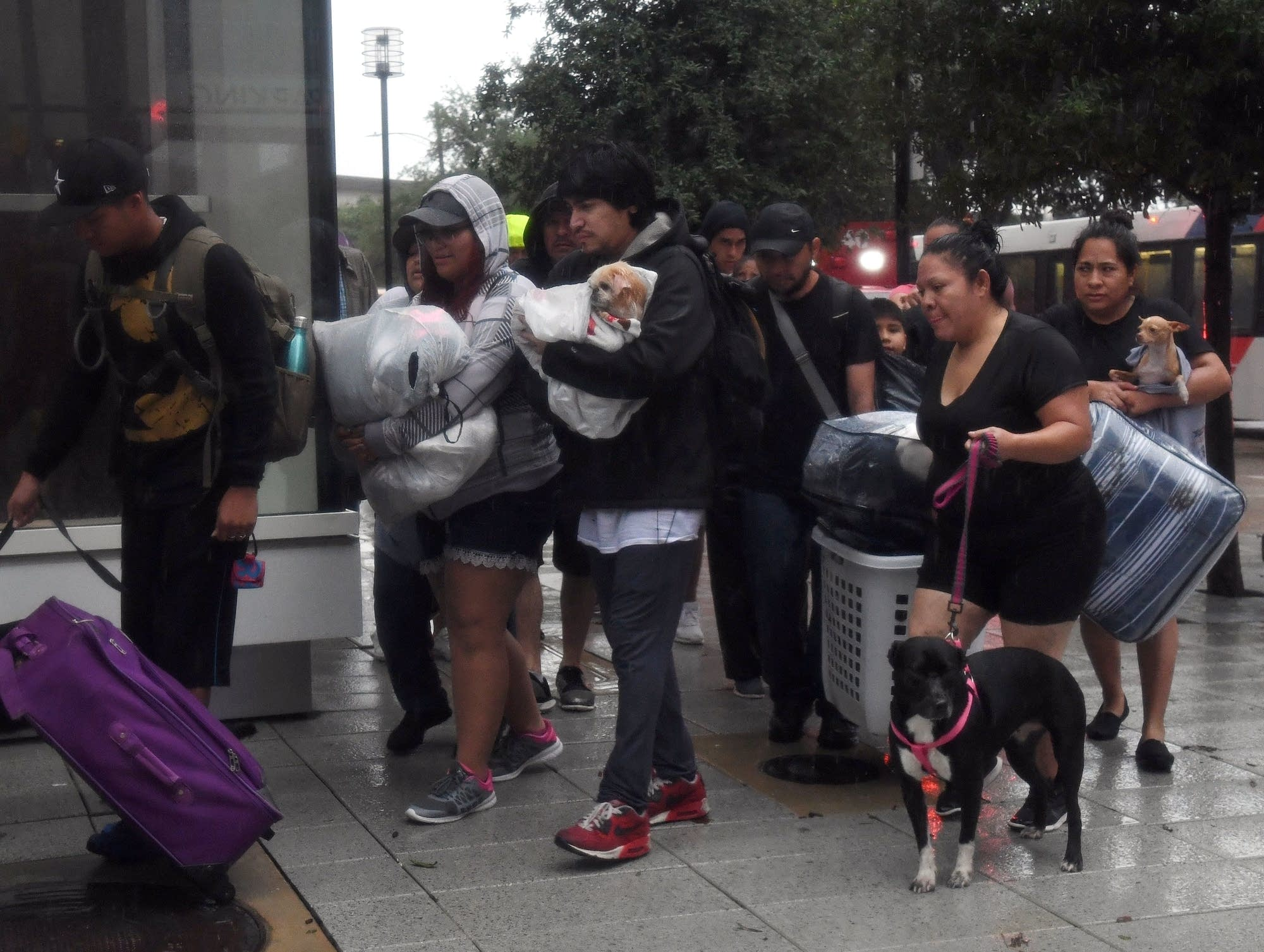 Evacuees arrive at the Convention Center shelter.