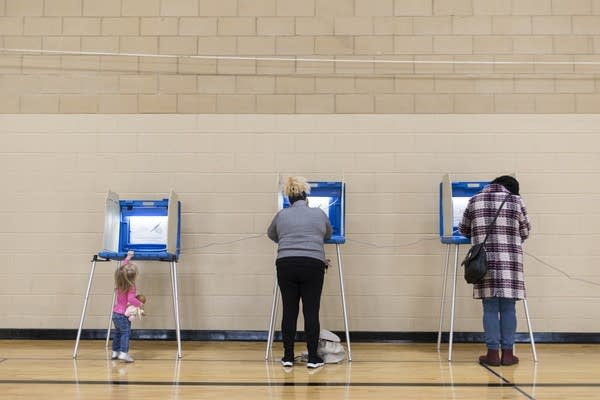 People stand at voting booths in a gym.