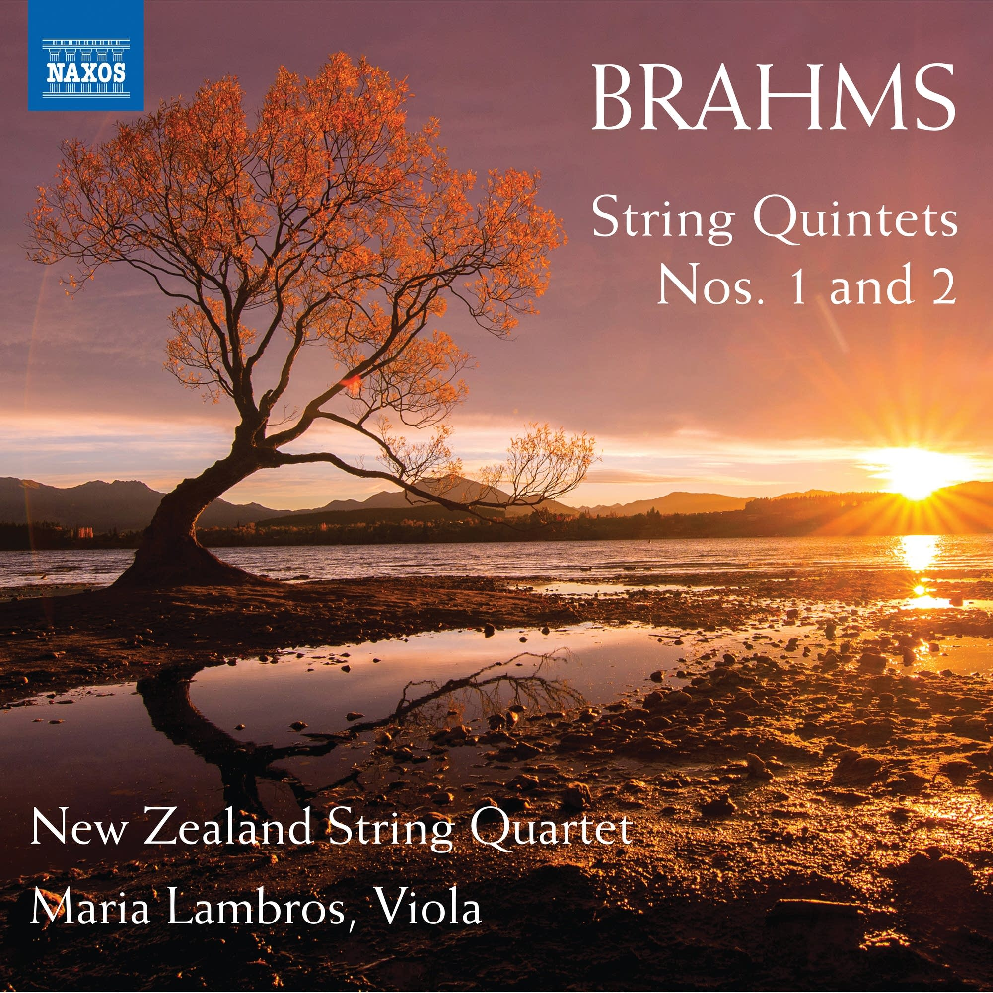Johannes Brahms - String Quintet No. 2: IV. Vivace ma non troppo presto